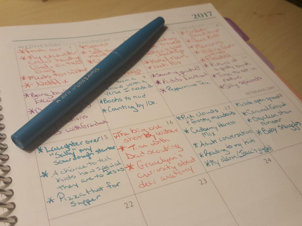 Gratitude Journal, Plum Planner